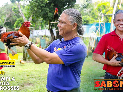 Pagtimpla ng Battle Crosses with Doc Jun Cueto (September 19, 2021)