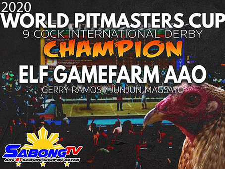 2020 World Pitmasters Cup 9-Cock International Derby Solo Champion (February 13, 2020)