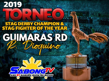 2019 Torneo Stag Derby Champion & Fighter of the Year (November 14, 2019)