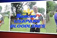 sabong, cockfighting, sabongtv, gamefowl, gamefarm, sabong philippines, cockfight, usapang bloodlines, jun cueto, heartthrob gamefarm