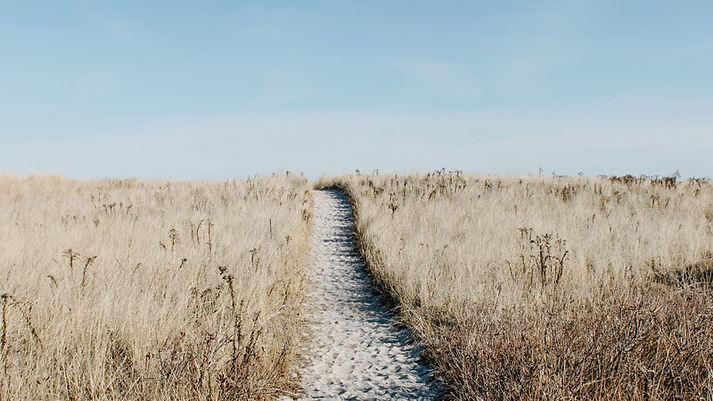 path to the beach.jpg