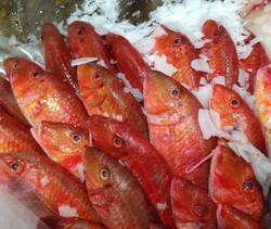 Fishmarket, Sicily