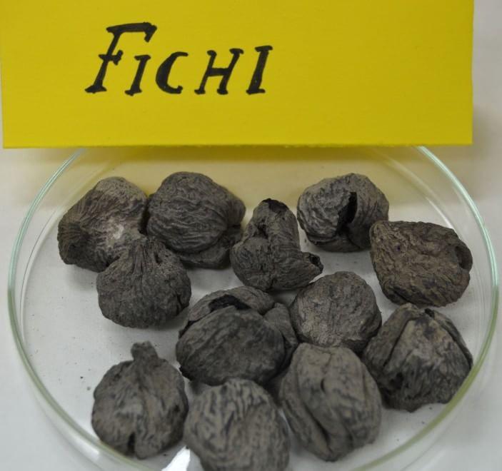 charred figs