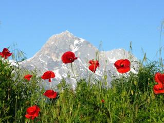Off the beaten path: Abruzzo