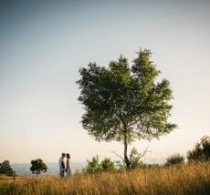mariage lanfrey 1.jpeg