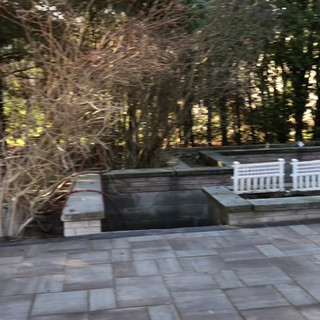Drift wood patio.mov