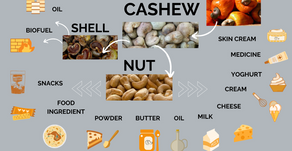 13 Cashew Nut Products and Their Uses