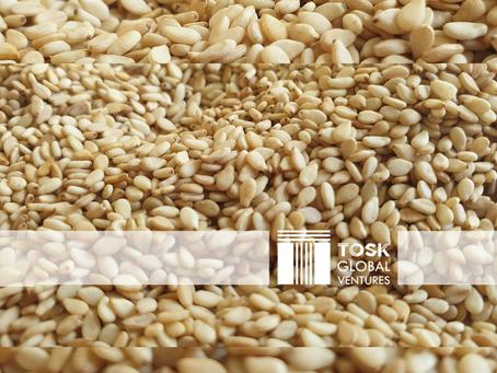 Sesame Seeds - Uses & Market