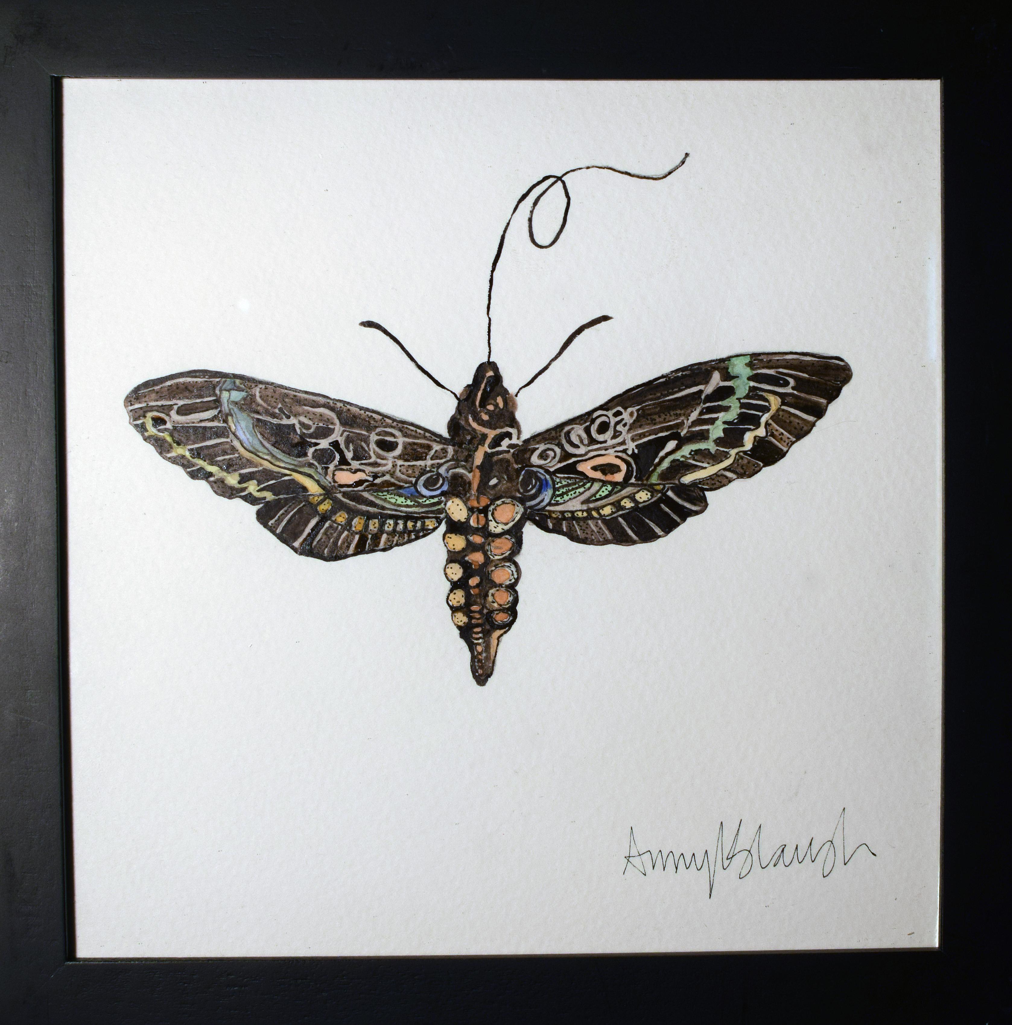 Hawkwing Moth