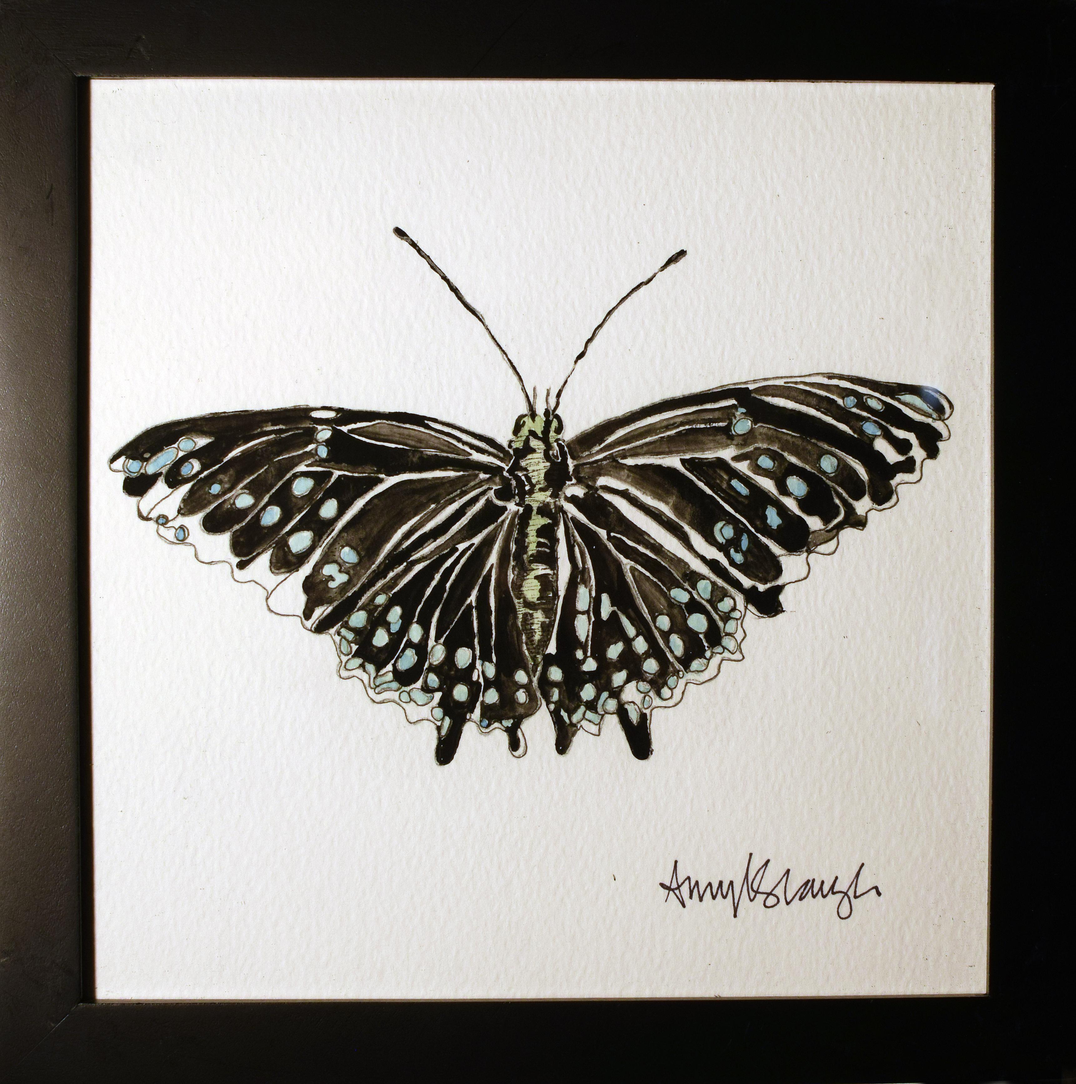 Black Monarch Butterfly