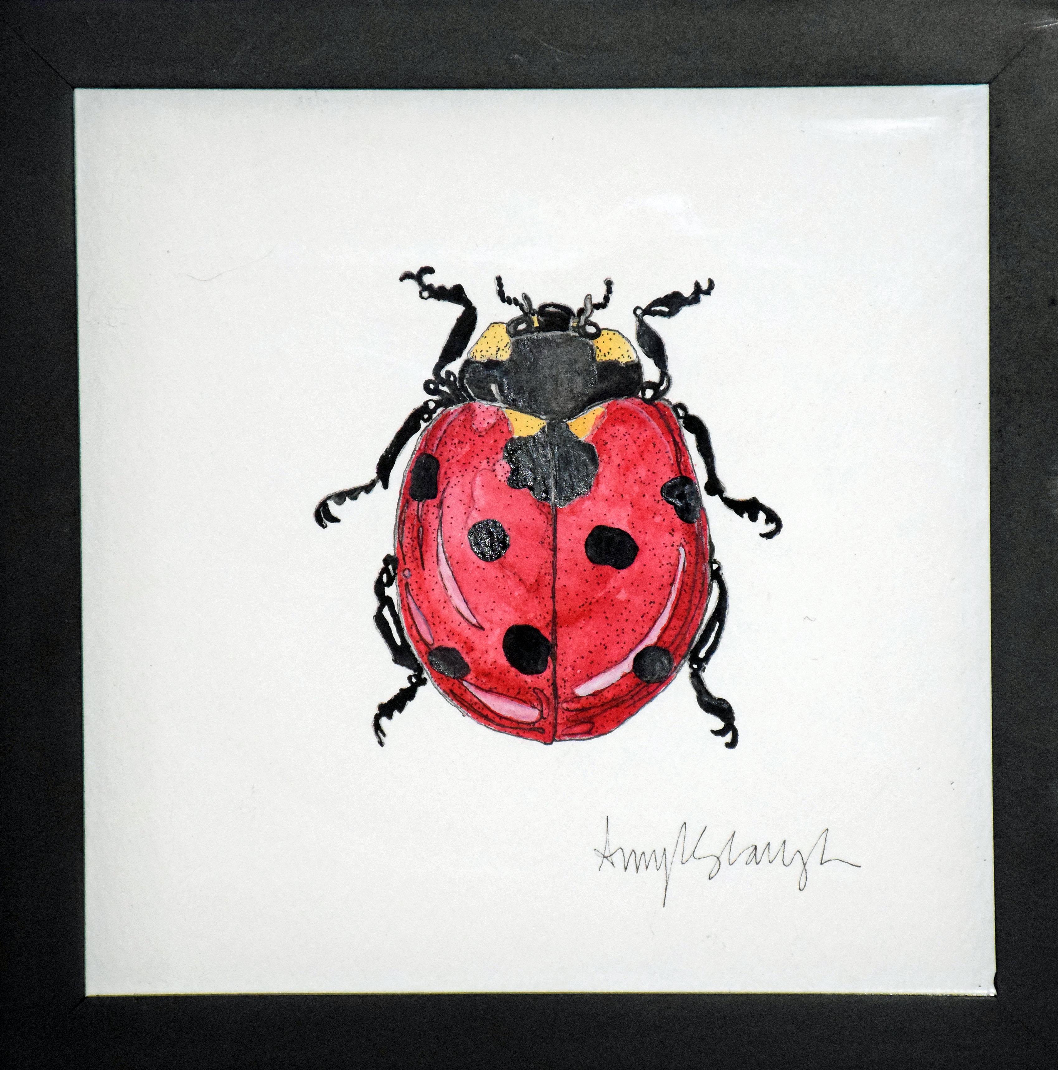 Lady Bug Four
