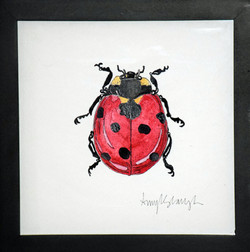 Lady Bug Four