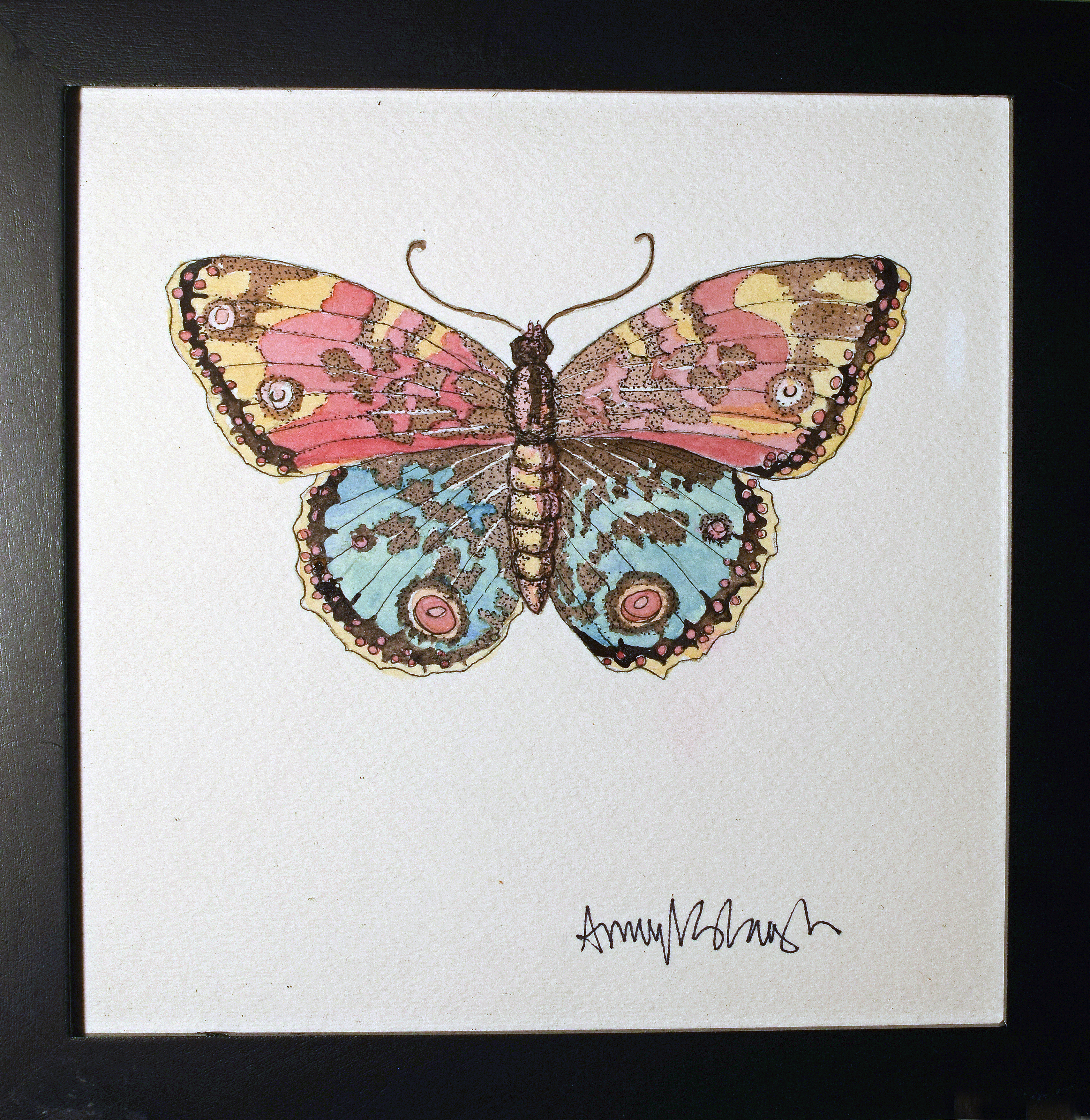 Eygptian Moth