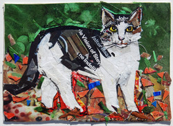 "Chunky Cat  5"" x 7"" Collage"