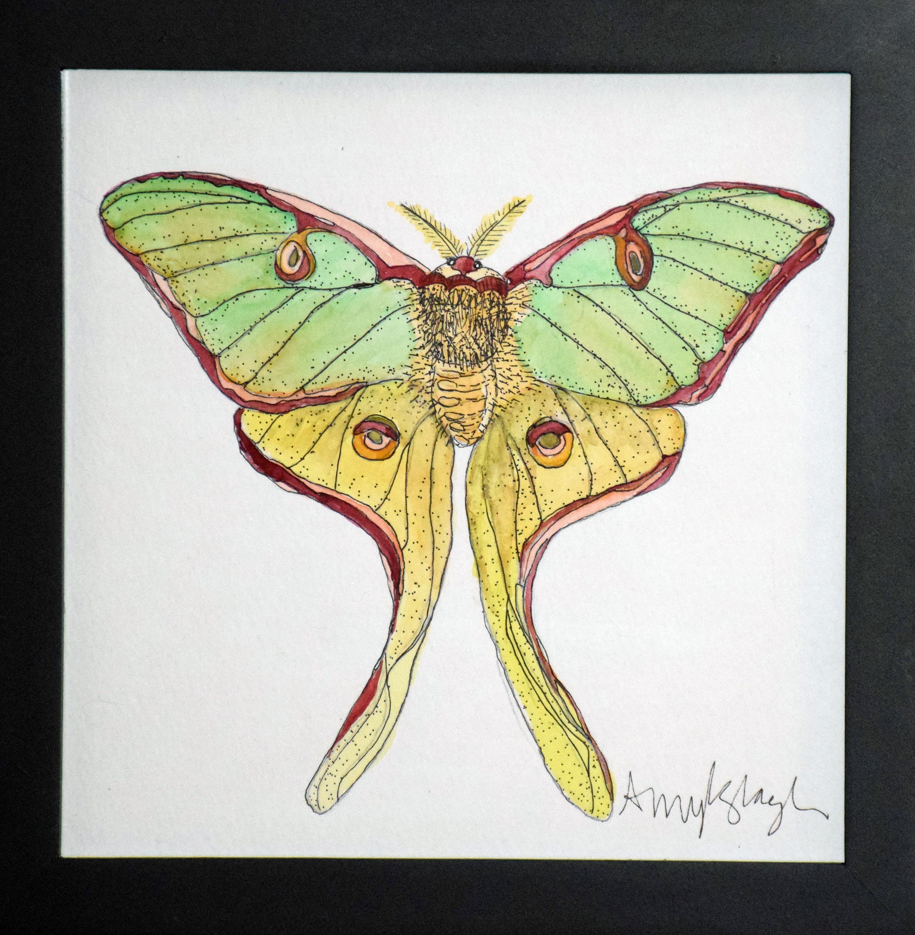 Green Lunar Moth