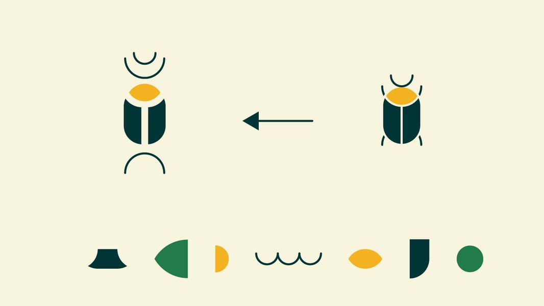 חיפושית זבל // מיתוג