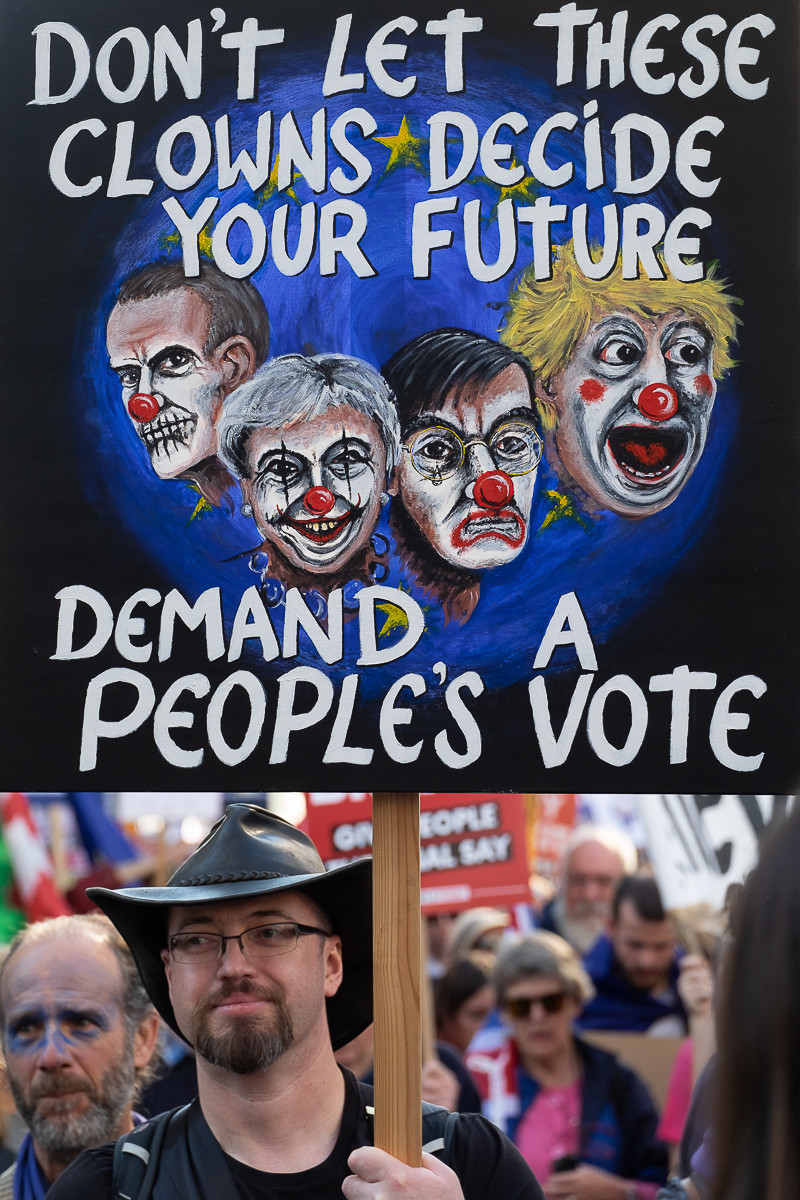 COLOUR - Peoples Vote March by Damian McConville (10 marks)