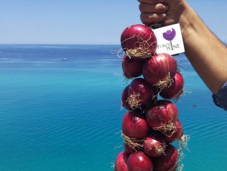 Dove acquistare cipolle a Tropea?