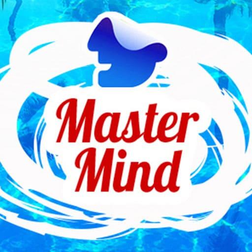 MASTER MIND - HUSKESPIL