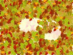 2-02-Leaves2