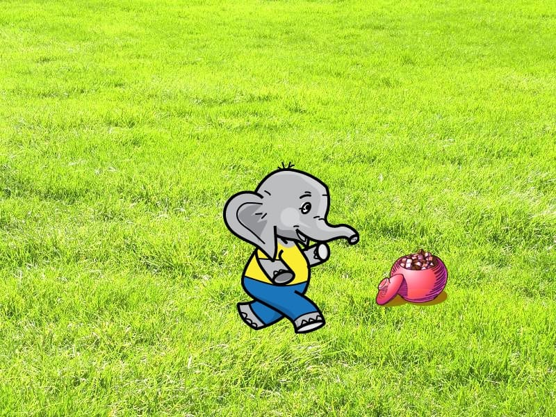 5-01-Elephant-and-sugar2
