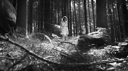 The Forest of Lost Souls (2017)