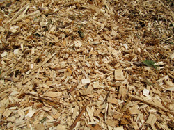 Top Quality Woodchip.