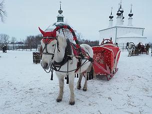 Лошадка в Суздале.jpg