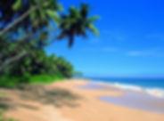 Шри-Ланка-берег.jpg