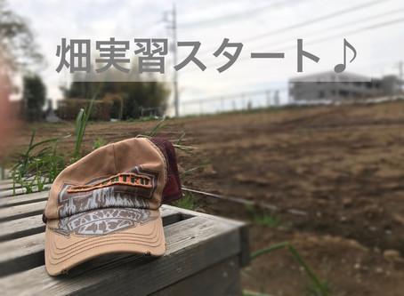 今日から畑の学校スタート❗️ 約1年で、どれだけ野菜が収穫できて、野菜作りの知識が高まるか楽しみです(^^)