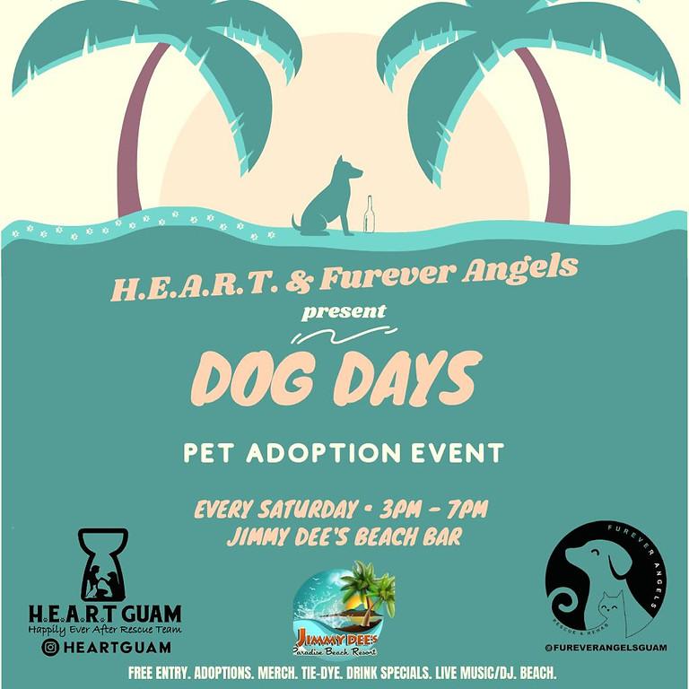 Jimmy Dees Dog Days Adoption Event