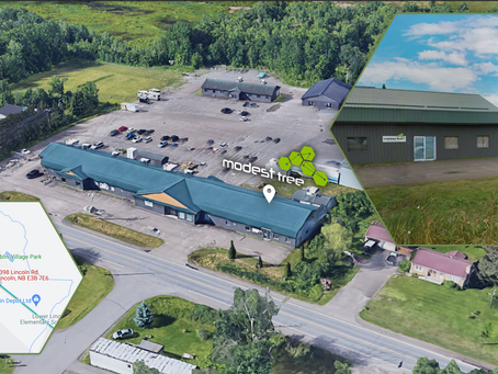 Modest Tree Opens New Office in New Brunswick as Part of Global Expansion Plan