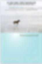 Screenshot 2020-03-07 07.59.23.png