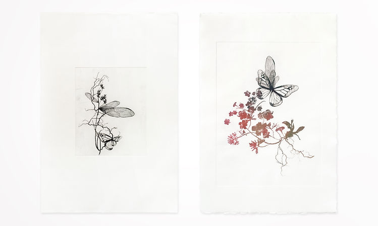 Gabriele Gutwirth Artist, 'Eden' variations, printmaking