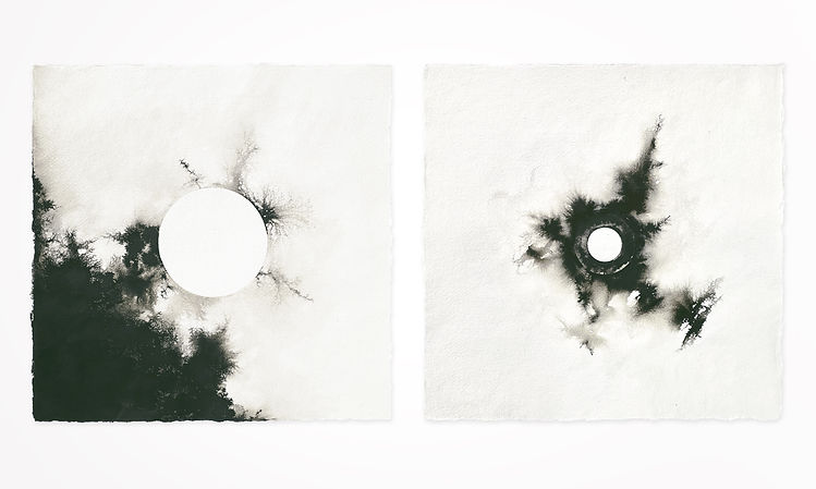 Gabriele Gutwirth Artist, Floating Ink, 'Change of State', 'Entropy' and 'Transmission'