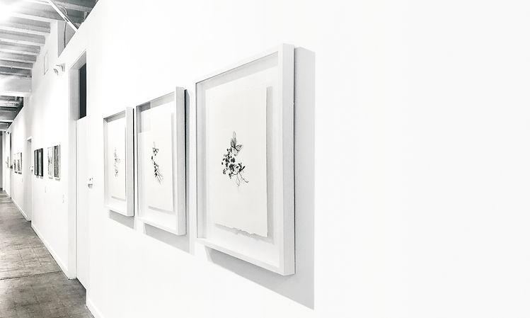 Gabriele Gutwirth Artist, 'Eden' series, Miami, Little Haiti