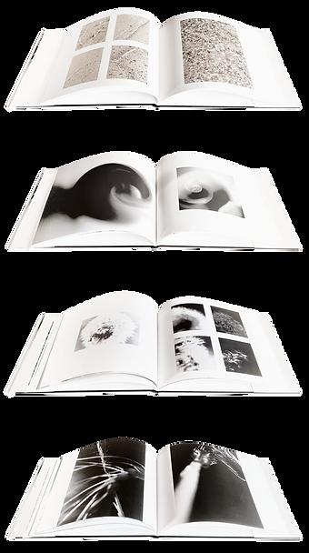 Gabriele Gutwirth Artist Designer Art Meets Design Book Design