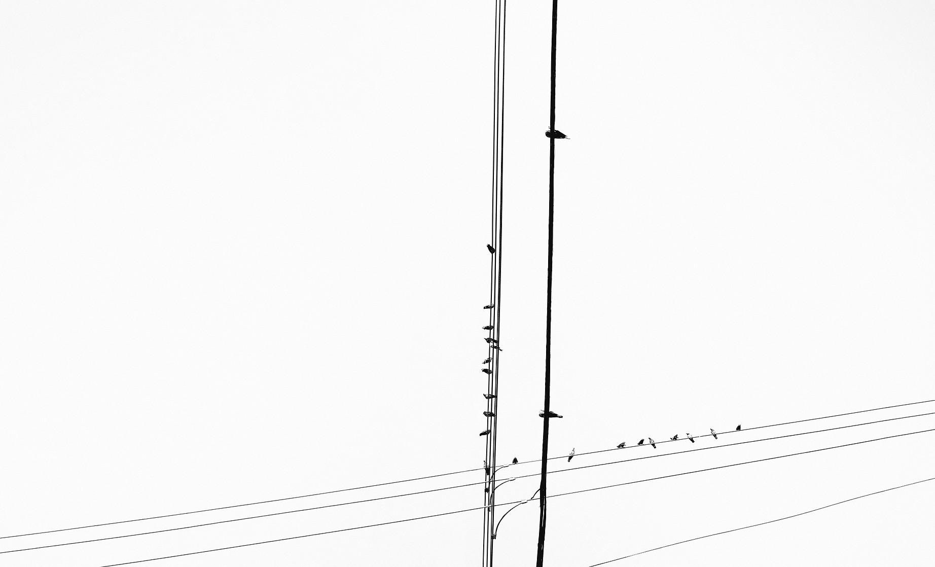 Gabriele Gutwirth Designer Photography Communication Design