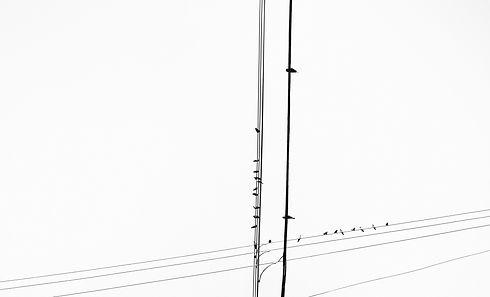 Gabriele Gutwirth Designer Artist Photography