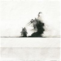 Gabriele Gutwirth Artist Designer Floating Ink