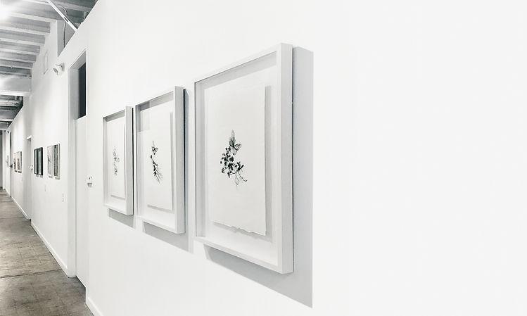 'Eden' series, Gabriele Gutwirth