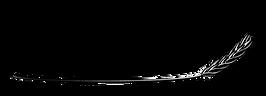 luca logo_k-01.png