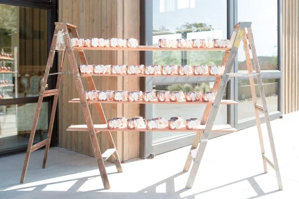 Two Ladders with Shelves