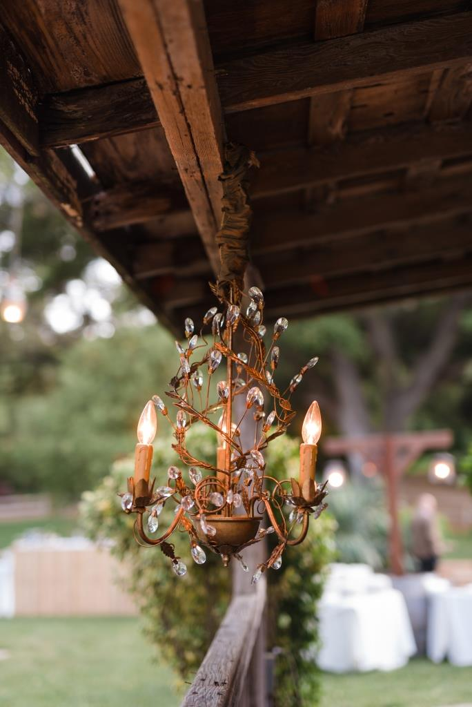 Willow Gold Leaf Chandelier