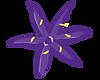 Camas Flower_cmyk-01.png