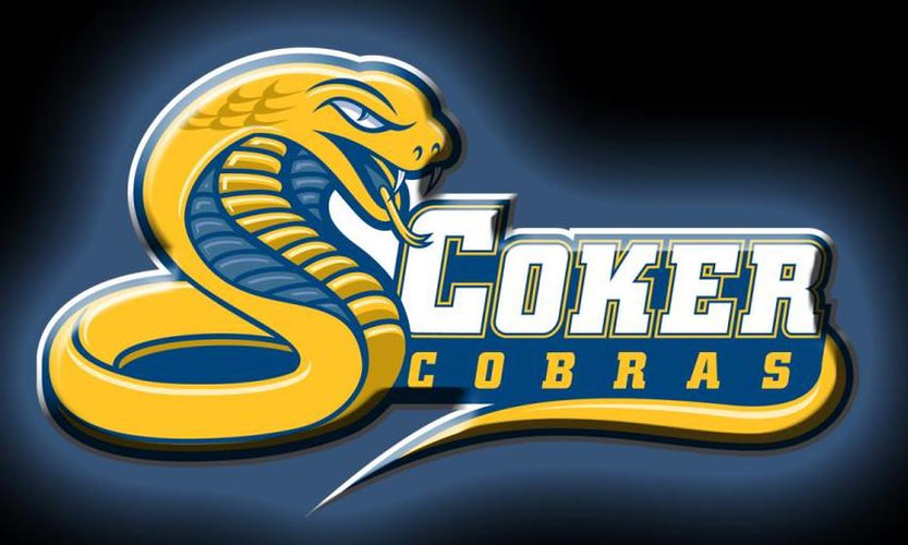 Cobra-20Logo-20Wallpaper.jpg