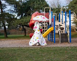 park4test copy.jpg