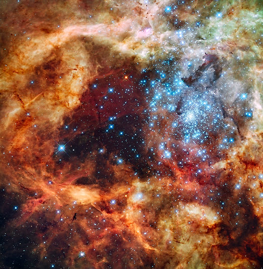 Grand_star-forming_region_R136_in_NGC_20