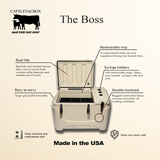 The Boss Infographic