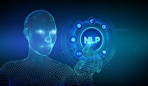 NPL_Blog.png
